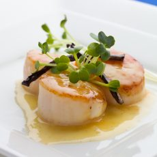 ROELESS KING SCALLOPS