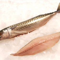 MACKEREL FILLET