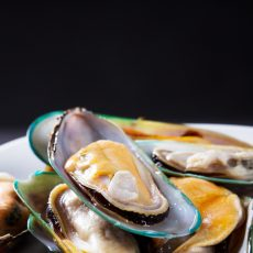 NEW ZEALAND GREEN LIPPED MUSSELS