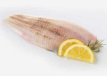 LARGE PLAICE FILLETS